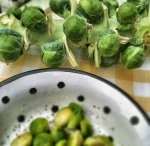 NutriSue - Brussels sprouts