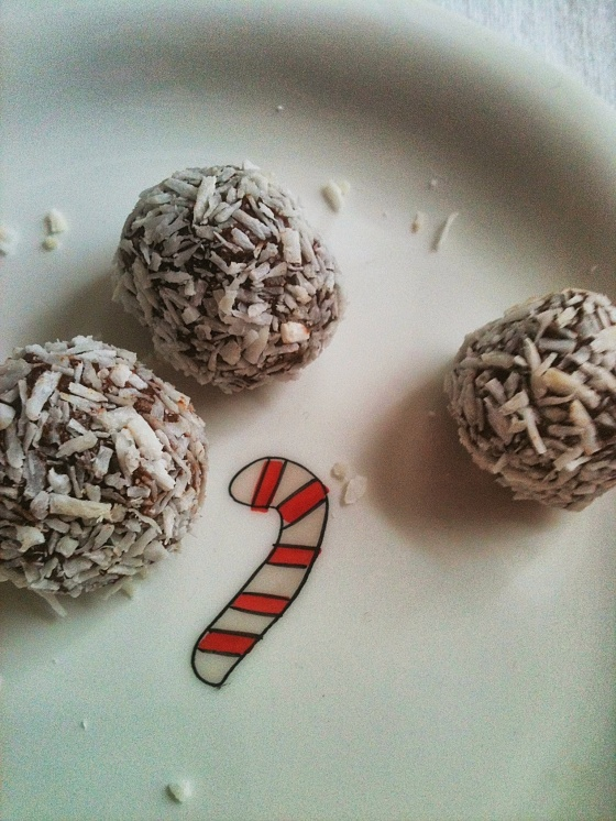 NutriSue - chocolate, coconut snowballs